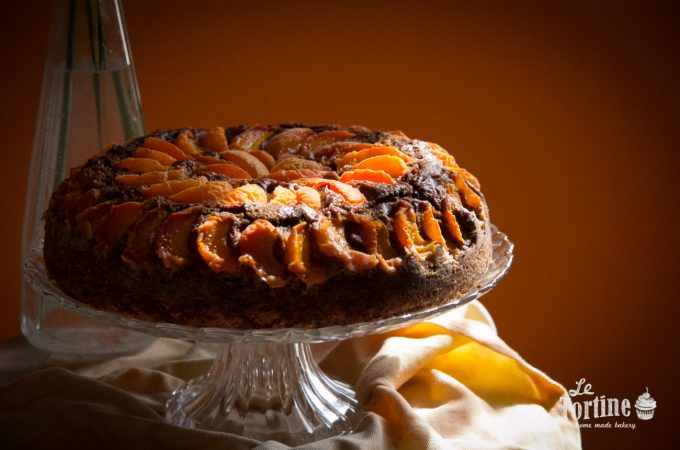 Carrot cake al cacao e albicocche